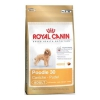 Royal Canin 1,5kg mini pudl dog