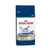 Royal Canin 15kg maxi sensible dog