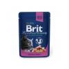 Brit premium 100g cat kapsička salmon+ trout v omáčce