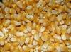 Kukuřice, 25kg