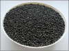 Řepkové semeno, 25 kg