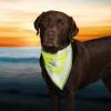 Šátek reflexní pro psa S-M 29-42cm