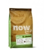 NOW CAT Kitten Grain Free 1,81kg