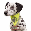 Reflexní šátek pro psa L-XL 43-60 cm