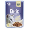 Brit premium 85g cat kaps.filety s hovězím v želé 1ks
