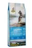 ISEGRIM Adult River: Losos s lesními plody 12 kg