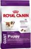 Royal Canin 15kg giant puppy dog