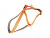 Postroj plast South oranž 1,5x40-50cm Duvo+