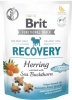 Brit snack Recovery herring & sea buckthorn 150 g