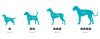 Obrázky u zboží: Geloren DOG L-XL, 420 g (60ks), kloubní výživa pro psy