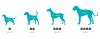 Geloren DOG S-M, 180 g (60ks), kloubní výživa pro psy