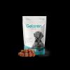 Nový Geloren DOG L-XL, 420 g (60ks), kloubní výživa pro psy